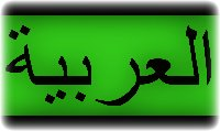 arabic translation, arabic language